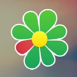 FireBounty ICQ Bug Bounty Program